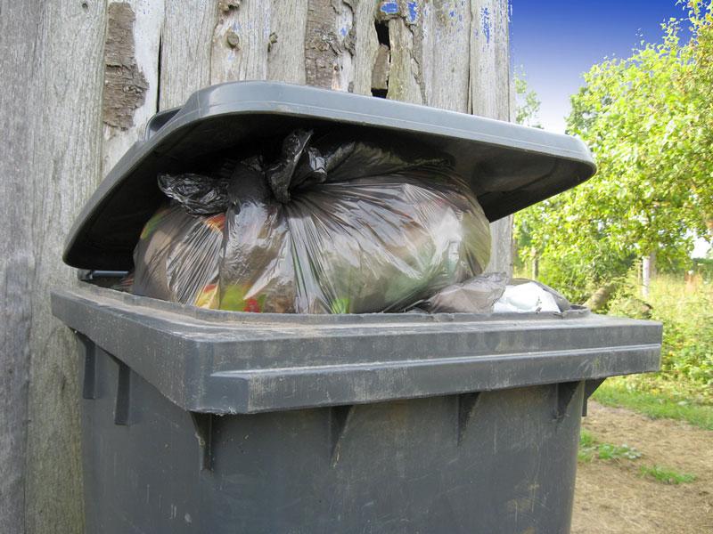 Tipps rund um die Abfallaufbewahrung